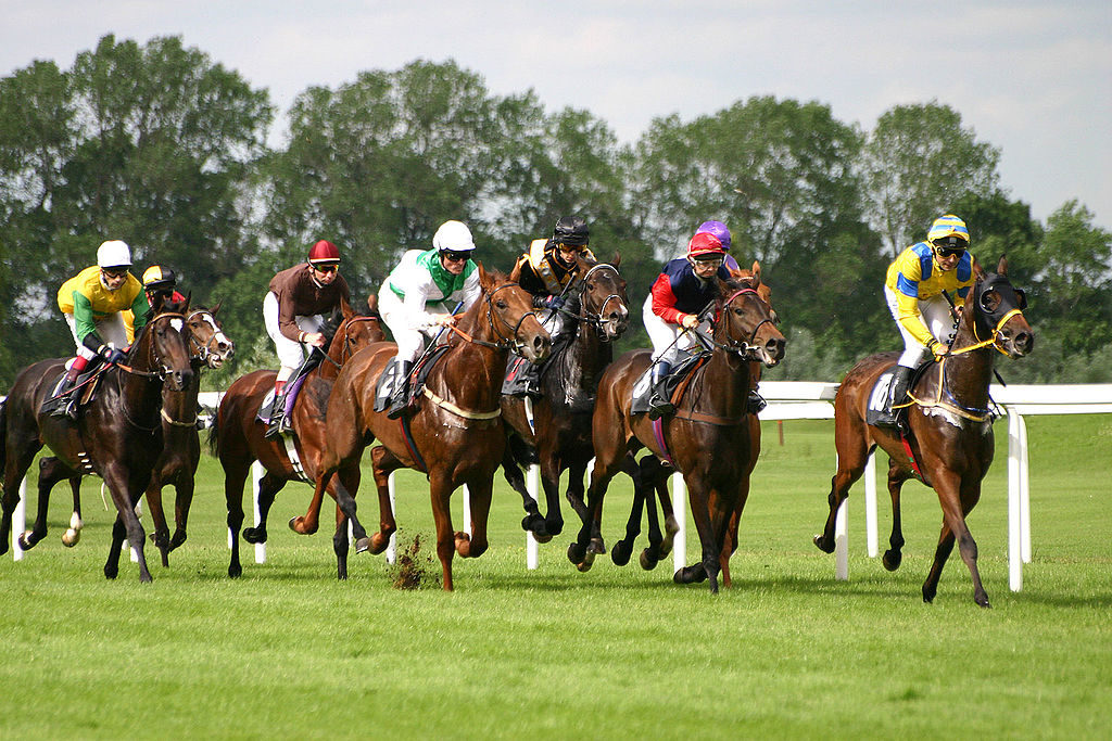 Where to find the best horse racing tips - Eternal Diaries